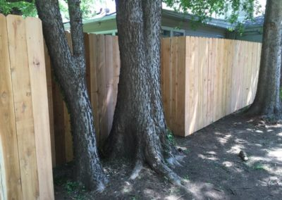 Custom Fence Around Trees