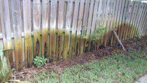 Fence repairs needed caused by sprinklers hitting bottom of fence.